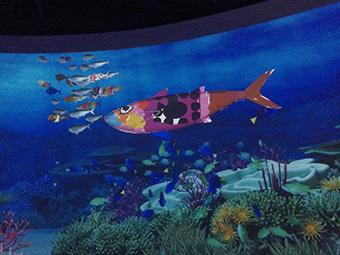 鴨川シーワールド-サンゴ礁の願い~Coral Message~